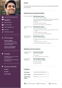 Modèle d'un CV chronologique réalisé sur CVDesignR