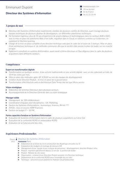 Exemple de CV DSI Directeur Système d'informations modèle CVDesignR